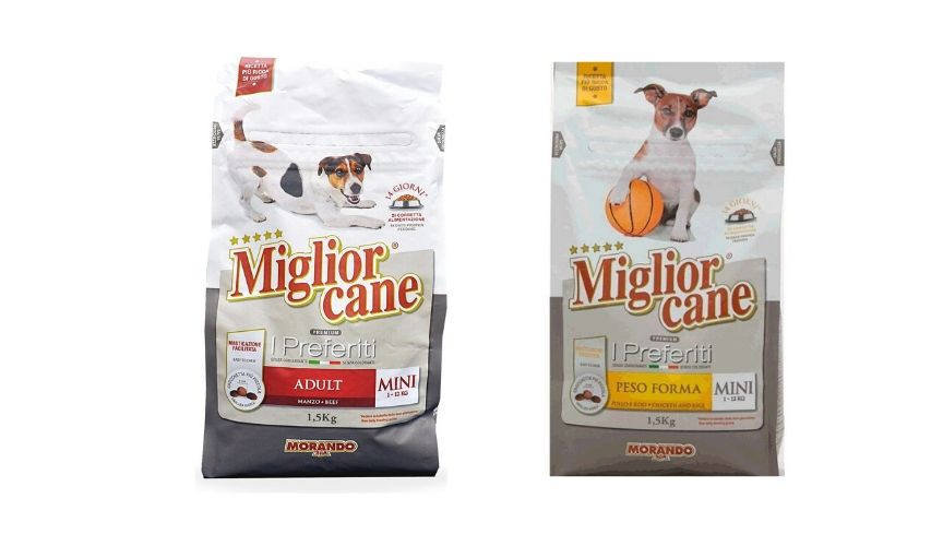prodotti pet food italiani morando miglior cane