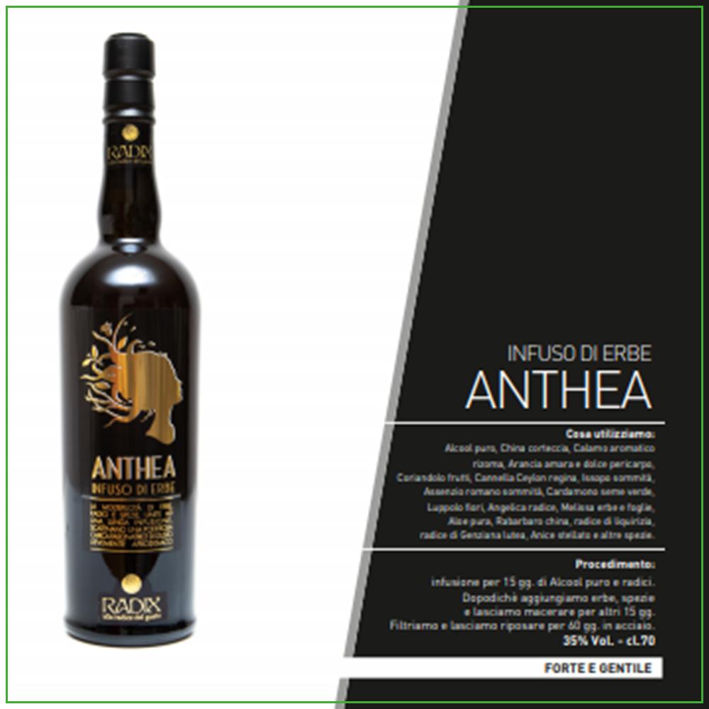 Radix Anthea - Infuso di Erbe